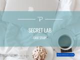 TrustPro - Secret Lab - Case Study - Business Strategy